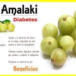 Sabías que la Amalaki Controla la Diabetes