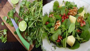 Beneficios de los berros Lo alimentos verdes son sinónimo de salud, bienestar y vida, es por eso que cualquier dieta que intente ser balanceada y saludable