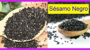 Sésamo negro para controlar la Diabetes  El sésamo o ajonjolí negro es el mejor a la hora de mantener el cuerpo y la mente sana gracias a sus beneficios y propiedades.